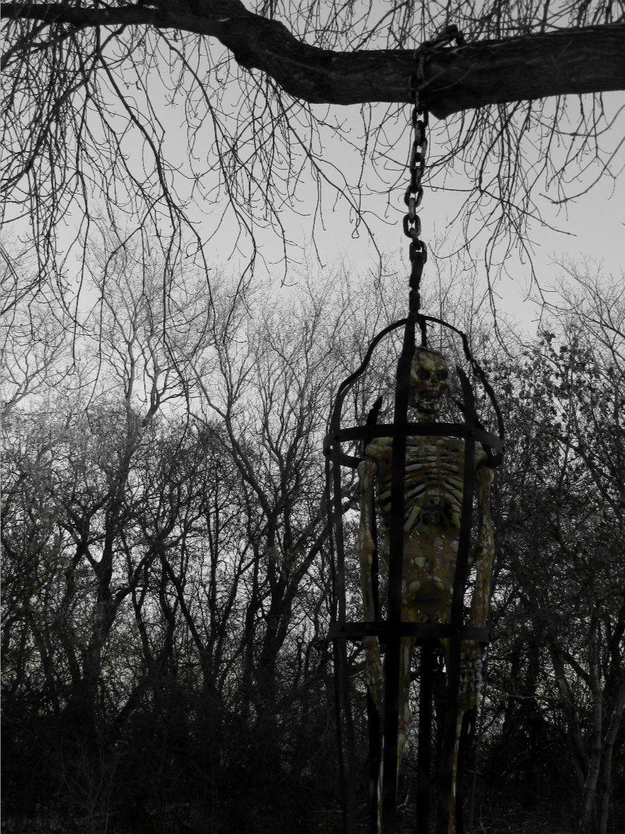Skeleton in cage Halloween props, Halloween haunt, Dark