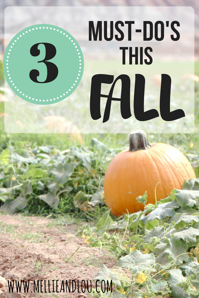Some amazing must-do's this fall!