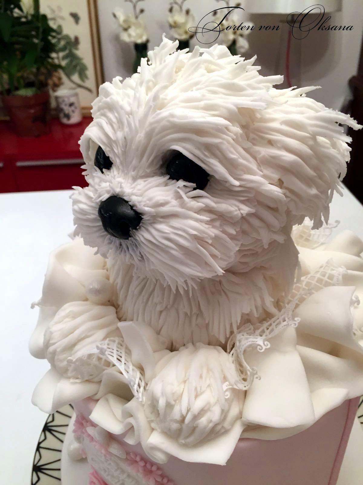 Pin by ursula nejepsa on hunde pinterest cake amazing cakes and