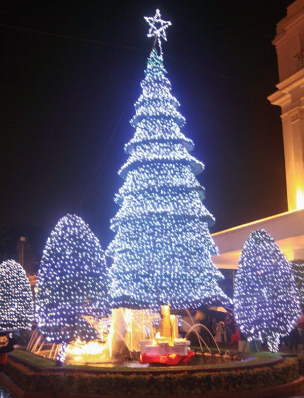 Christmas tree, Mount Lavinia Hotel, Colombo, Sri Lanka