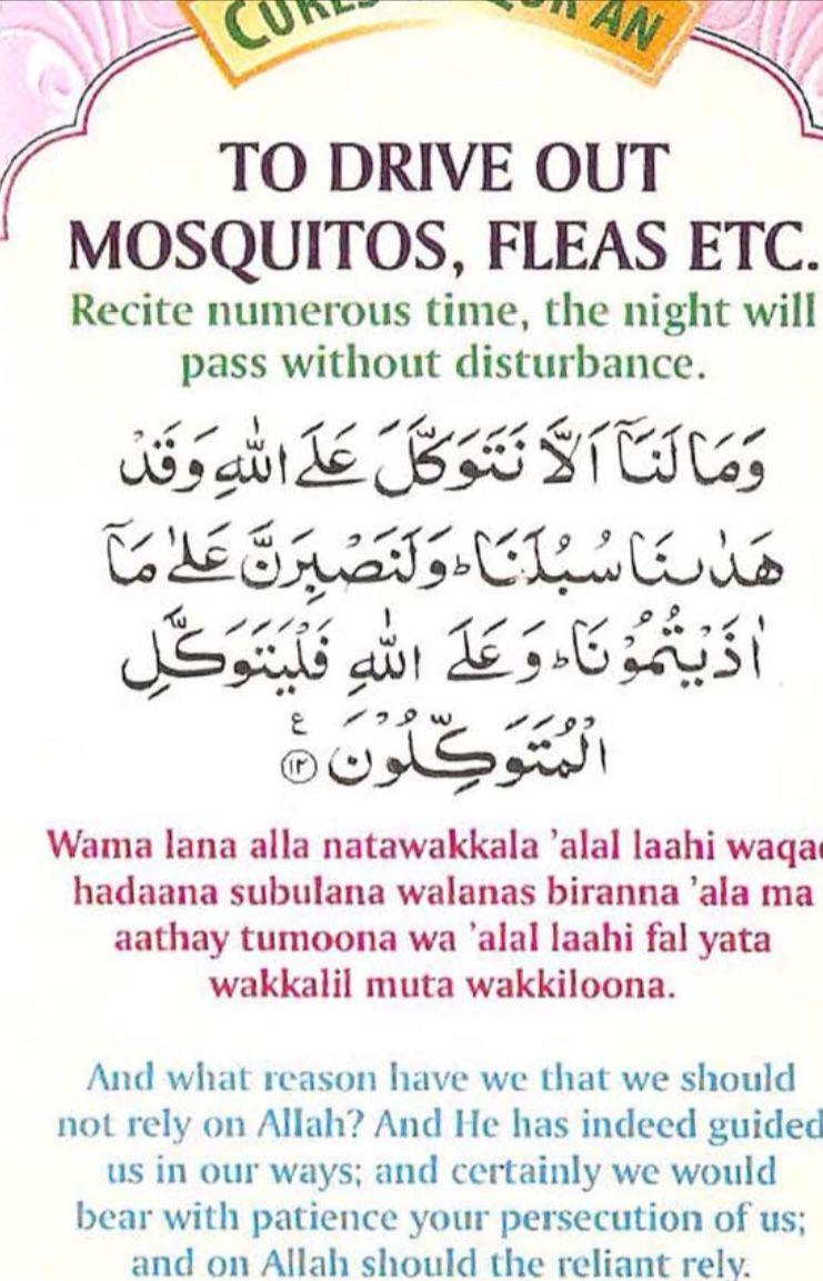 Mosquito machchhar bhagao | Islam quran | Duaa islam