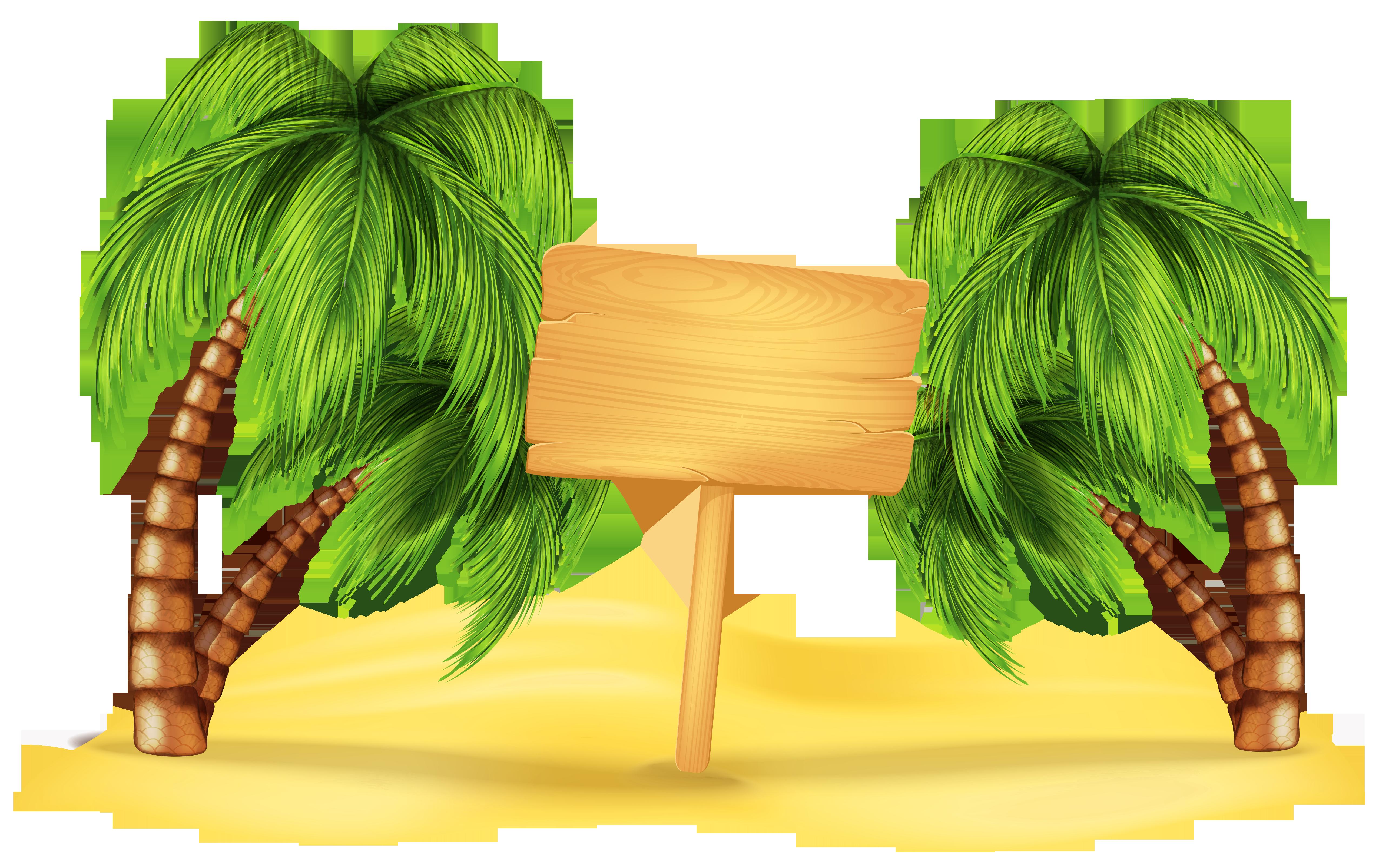 Transparent Beach Palm Decoration PNG Clipart Bolo com