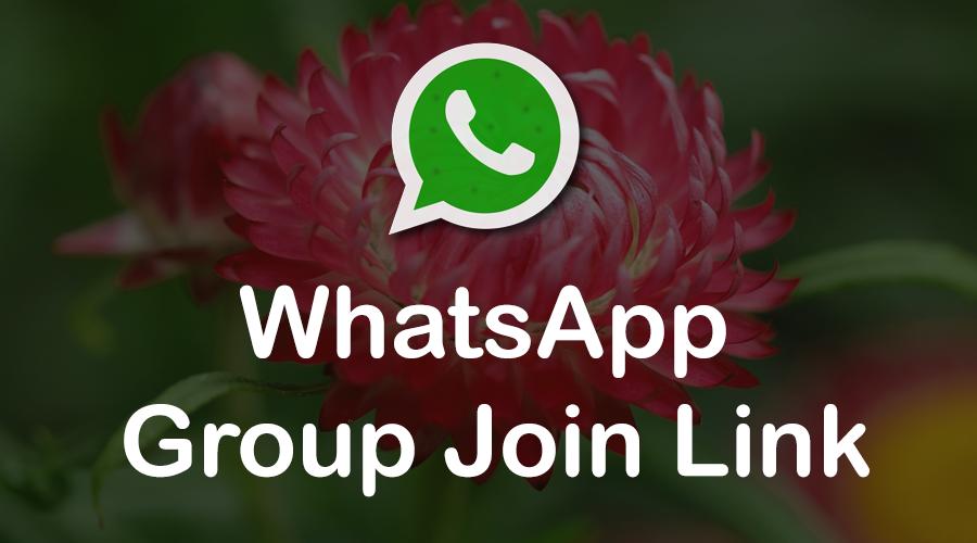 WhatsApp Group Link Collection Get New Whatsapp Grop