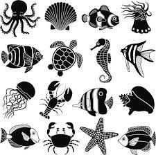 Image Result For Sea Creature Clipart Black And White Art Sea Creatures Drawing Silhouette Art
