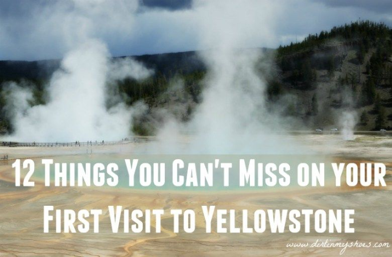 Yellowstone National Park || Dirt In My Shoes