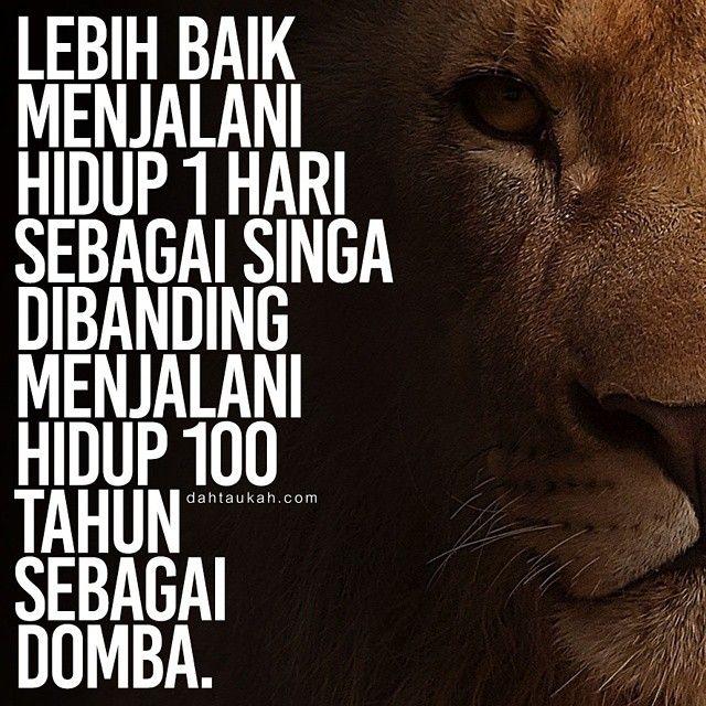 Lebih Baik Menjalani Hidup 1 Hari Sebagai Singa Dibanding