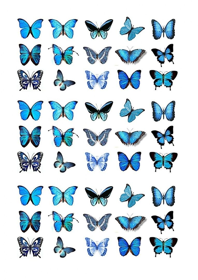 45x Blue Butterflies Edible Cake Toppers