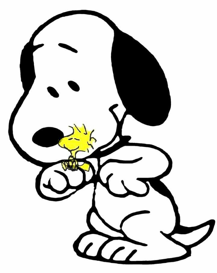 Snoopy and Woodstock | Snoopy | Pinterest | Snoopy, Peanuts gang and ...