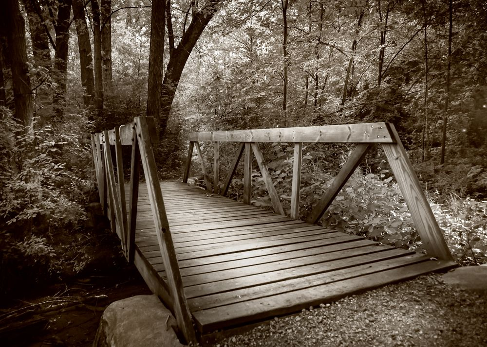 Sepia landscape photography of a bridge. #landscapephotography #landscape #nature #dream #HDR #photography #photooftheday #sepia