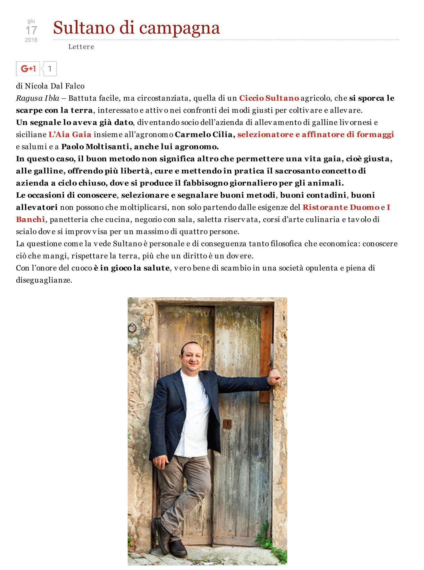 Sultano di campagna www.cicciosultano.it