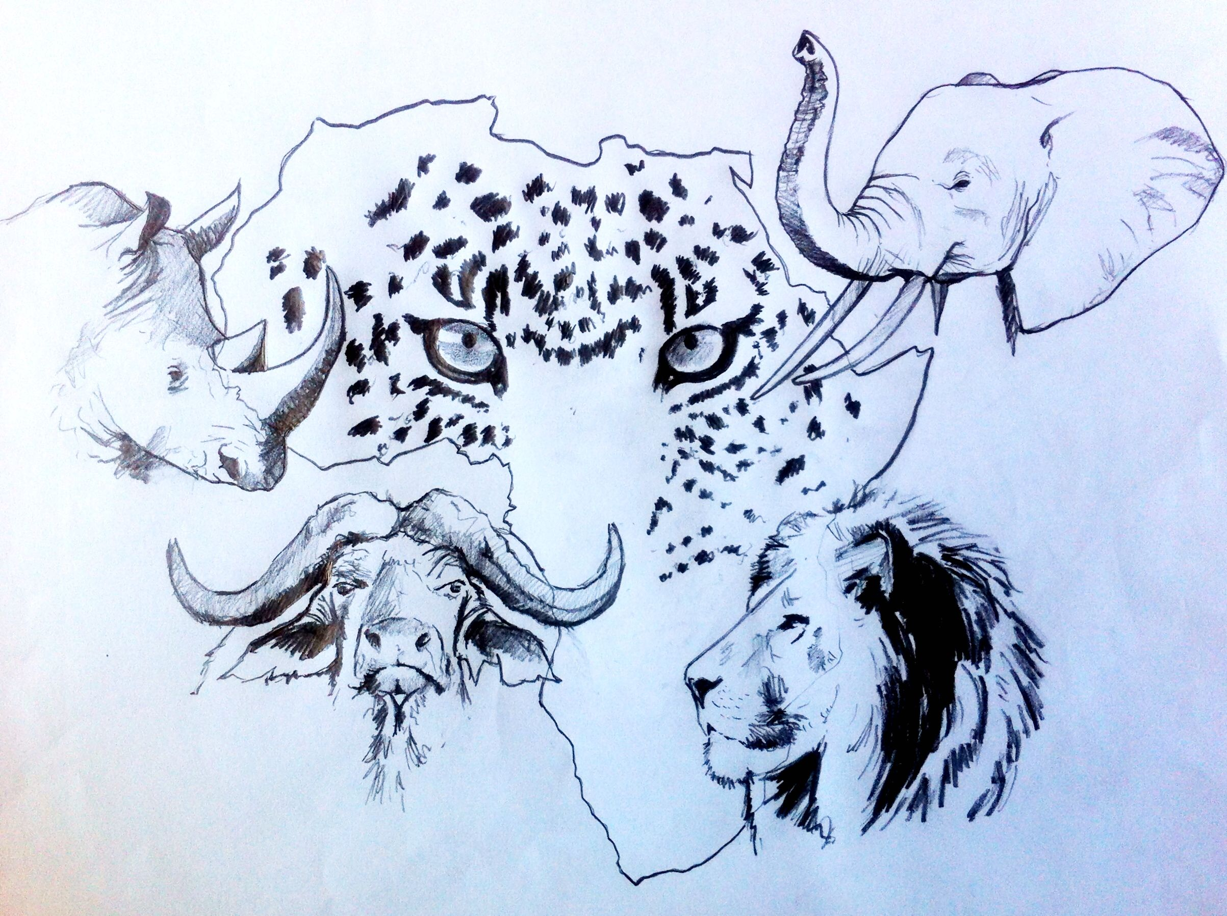 Pin By Debbie Visagie On Big 5 Art Animals Animal