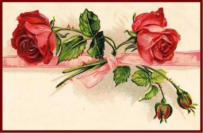 red roses pink ribbon