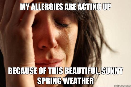 dbfa02541aa454e3c1c25dee67958041 spring allergies meme allergy season pinterest meme, humor