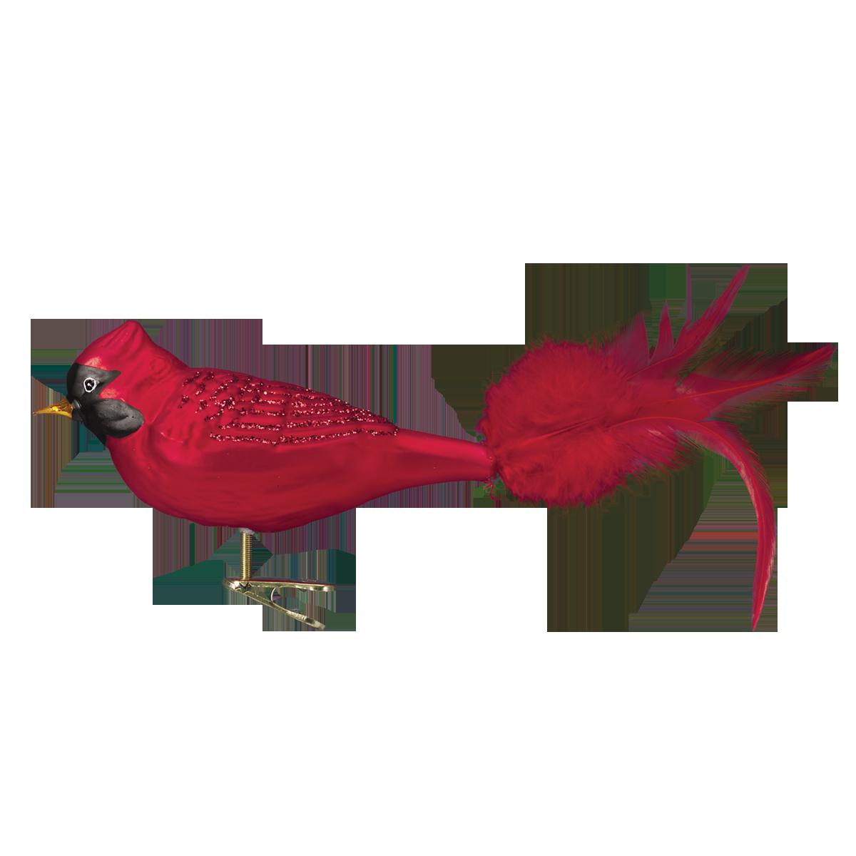 Old World Christmas Winter Cardinal