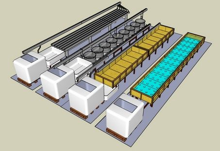 Aquaponics commercial aquaponics systems garden for Hydroponic raft system design