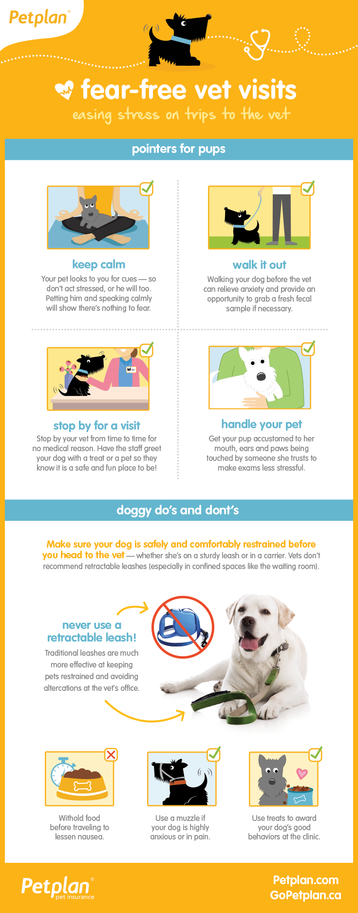 Take The Stress Out Of Your Pet S Next Visit To The Vet With These