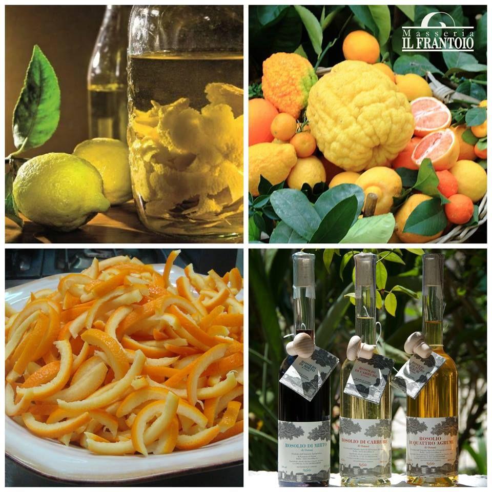 Esclusivamente alla #MasseriaIlFrantoio potete assaporare il #Rosolio ai 4 agrumi, preparato come insegna la #tradizione, mettendo in infusione le bucce profumatissime degli agrumi ...