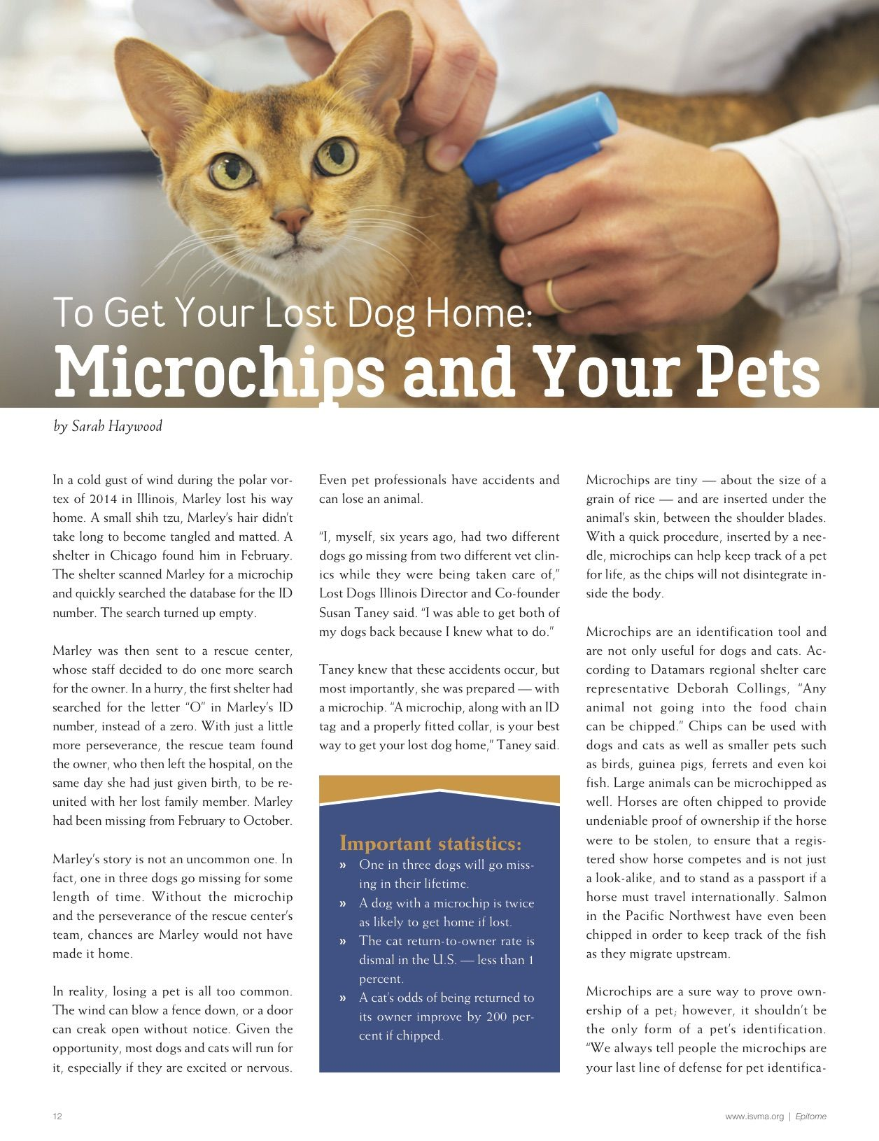 Microchips And Your Pets Lost Dogs Illinois Losing A Dog Your Pet Pets