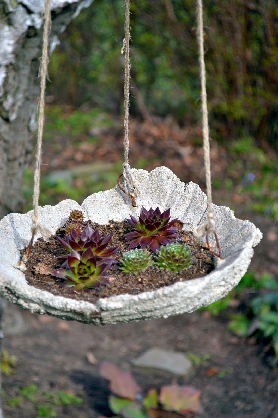 Gjuta betong rabarberfat upphängt fågelbord fågelbad