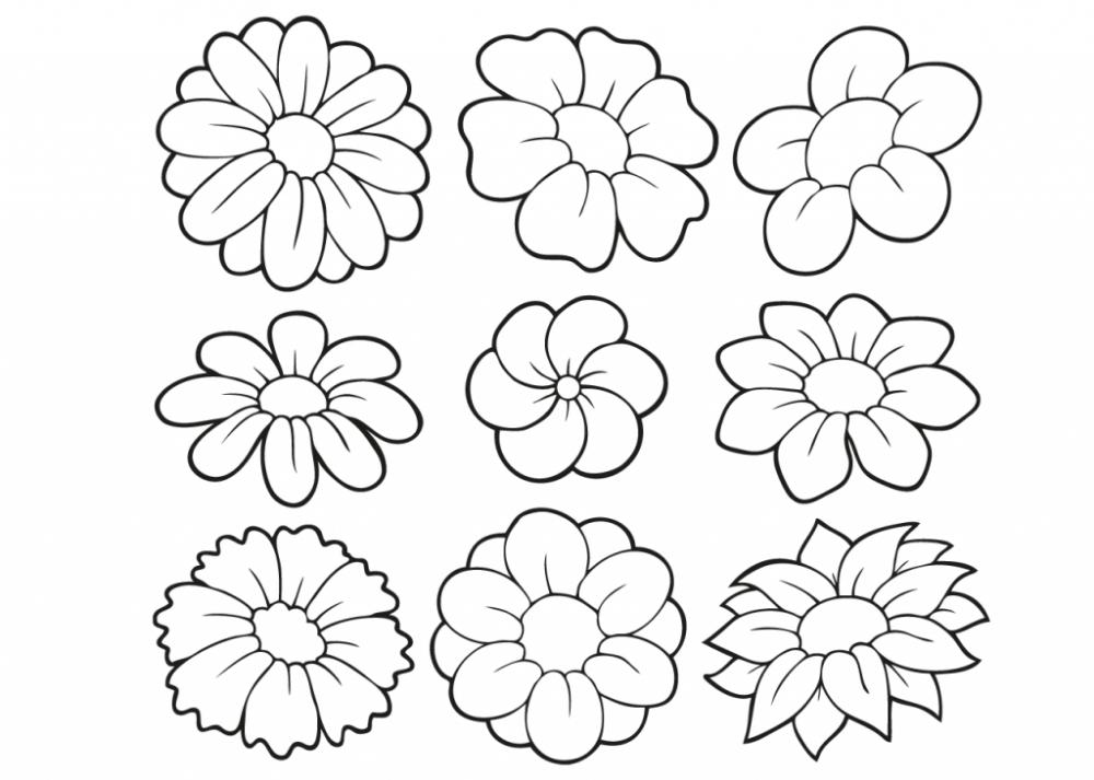 kleurplaten bloemen volwassenen voor met moeilijke