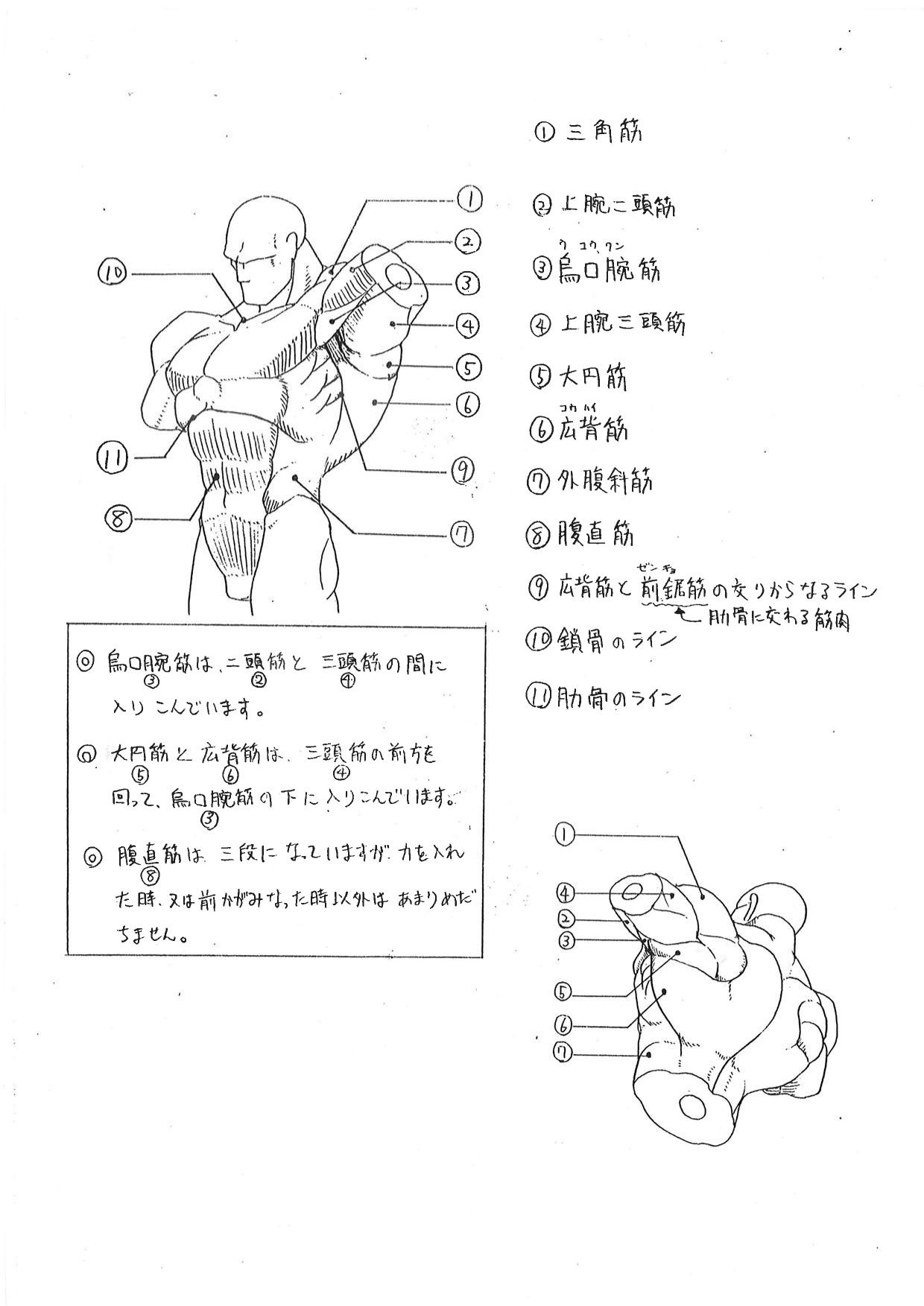 Capcom\'s Human Anatomical Reference For Artists | Tutorials ...