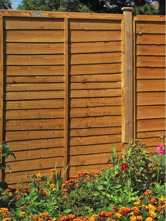 Shiplap Fencing Is Inexpensive Option   Home And Garden Design Ideau0027s