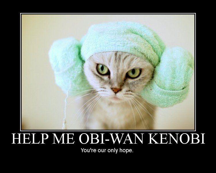 Obi Wan Kenobi It Work Quotes Google Search Quotes Pinterest