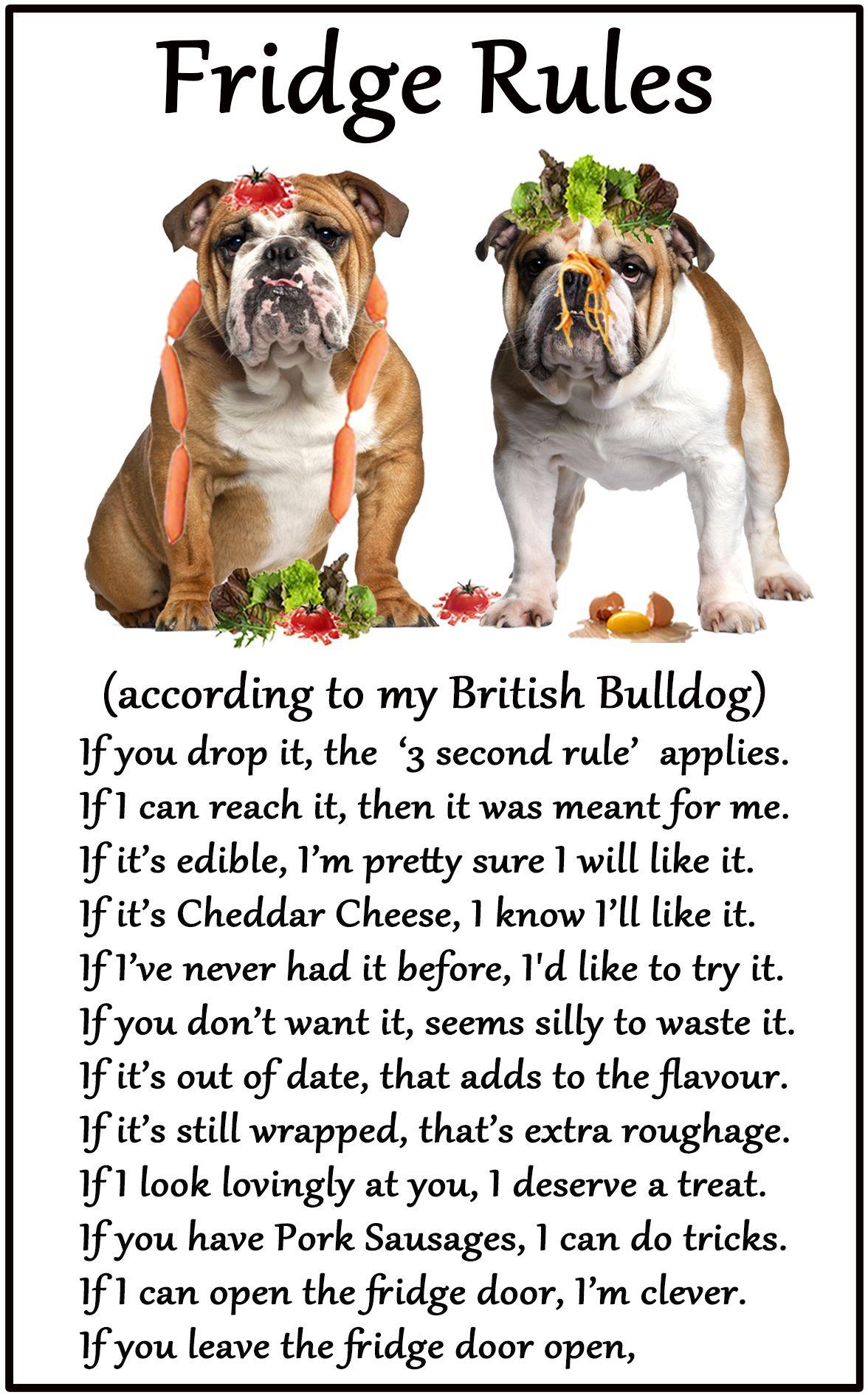 British Bulldog Humorous Dog Fridge Rules. Size