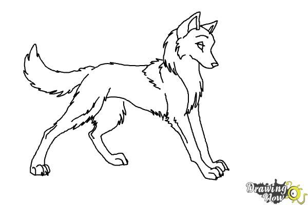 How To Draw Anime Wolves Easy Cartoon Drawings Anime Drawings Anime Wolf
