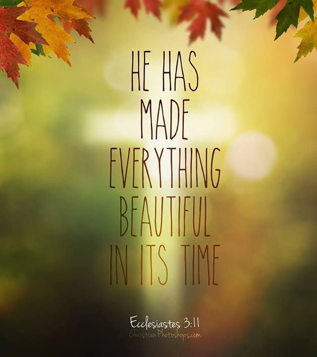 He has made everything beautiful in it's time...