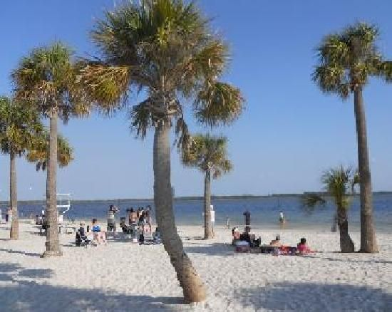 Pine Island Beach Hernando Cty Fl We Love Our Local Open To Dogs Once A Month Great Food Shack