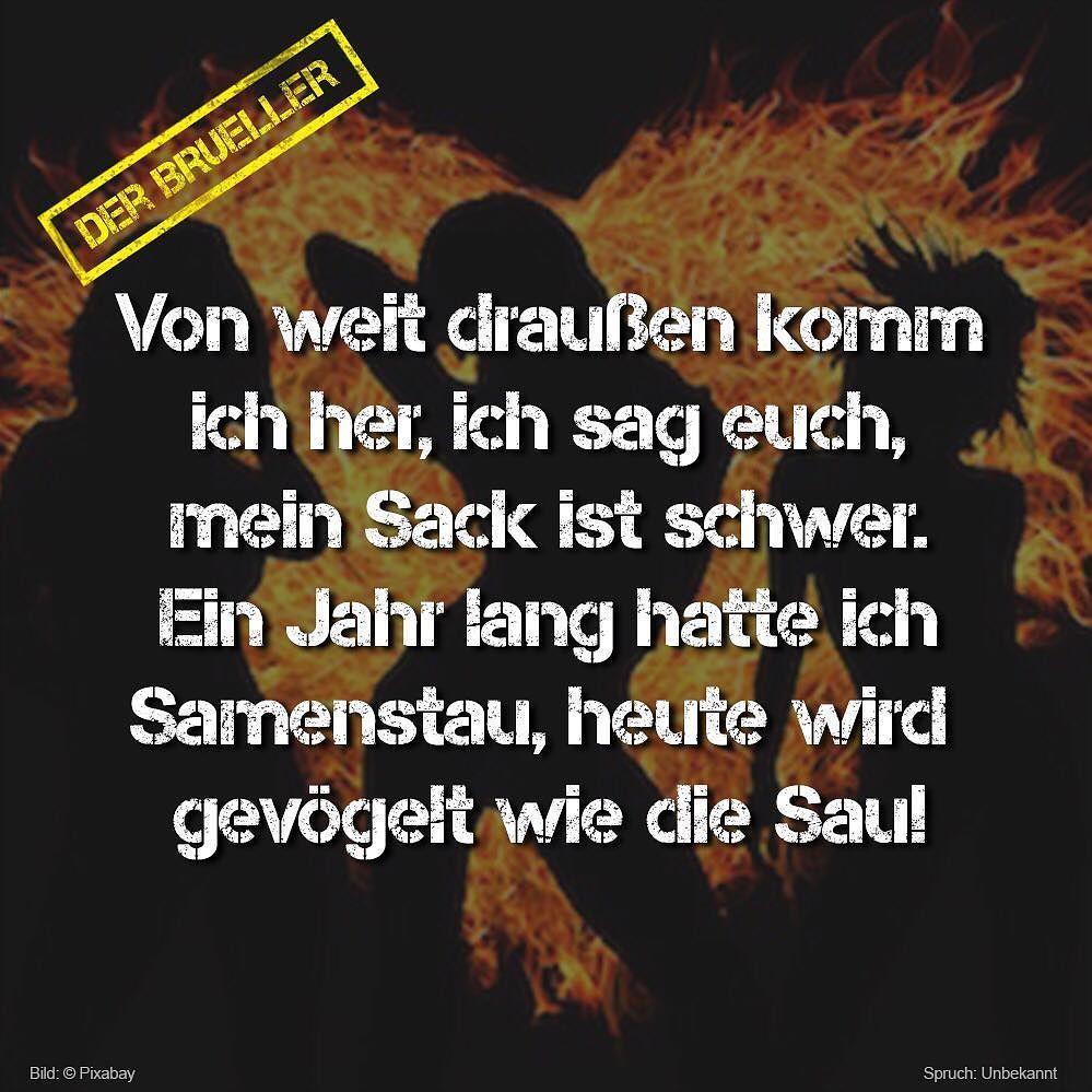 #Schweinisch #versaut #sprüche #life #lifeisstrange #