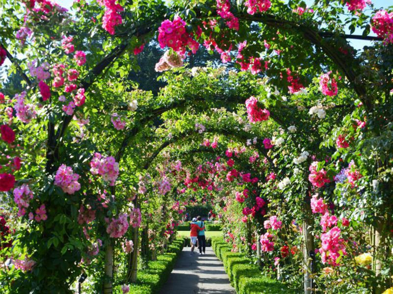 Amazing Gardens Around the World is part of Butchart gardens, Buchart gardens, Amazing gardens, Organic gardening books, Gardening direct, Wooden garden gate - You don't need a green thumb to enjoy a garden  Just slow down and savor these exquisite oases of calm