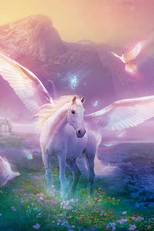 I Wish This Was Real With Images Unicorn Fantasy Mythical