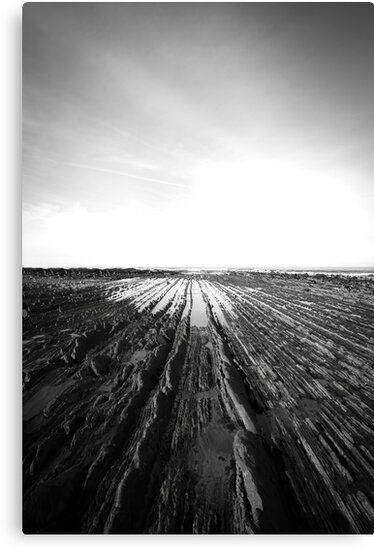 Lienzo en blanco y negro del flysch de Zumaia