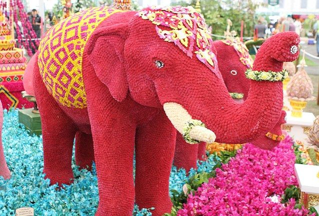 Another Elephant This One Made Out Of Flowers Featured At The Chelsea Flower Show