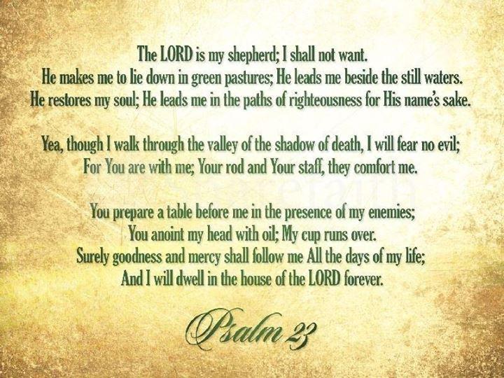 Pin by Sara DeWitt on Christian Pics | Psalm 23 sermon