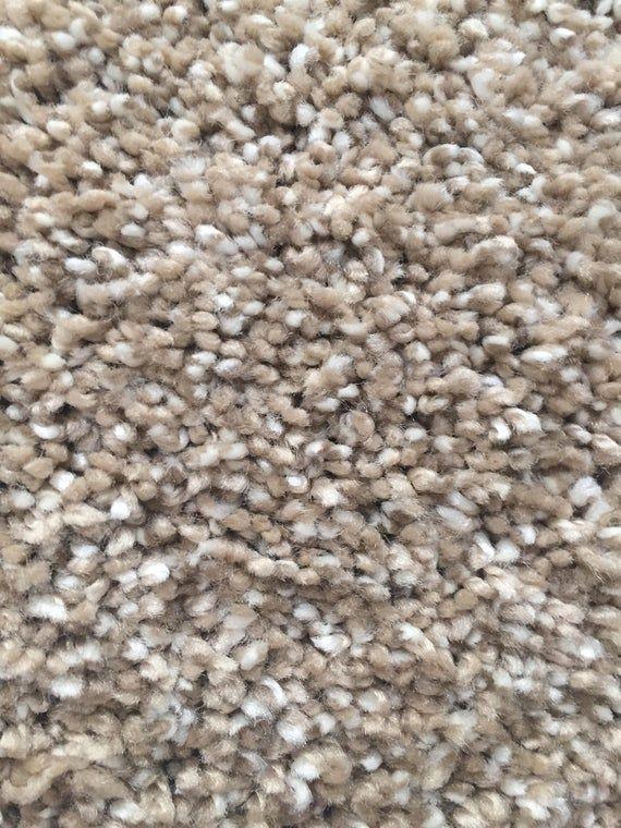 Best Dazzling Acorn Plush Sh*G True Bullnose™ Padded Carpet 400 x 300