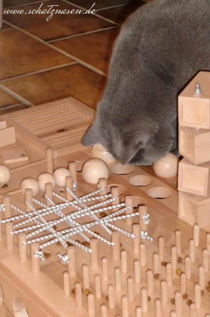 Katzen Fummelbrett Aus Holz Selbst Gebaut Fummelbrett Wohnungskatzen Fummelbrett Katze