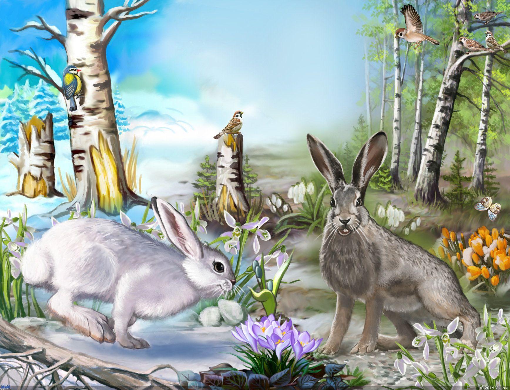Зайчики в лесу рисунок