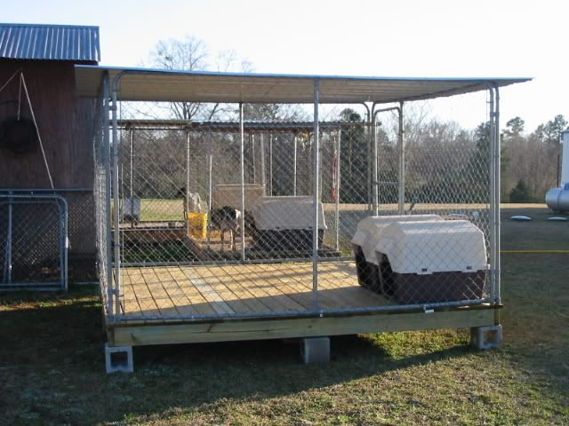 Dog Pens For Sale Tractor Supply
