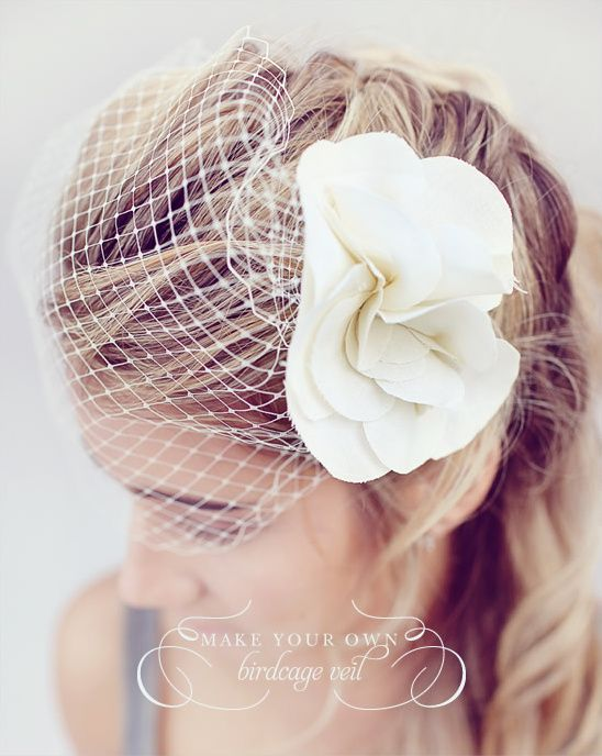 Do it yourself birdcage veil veil wedding and wedding do it yourself birdcage veil solutioingenieria Images