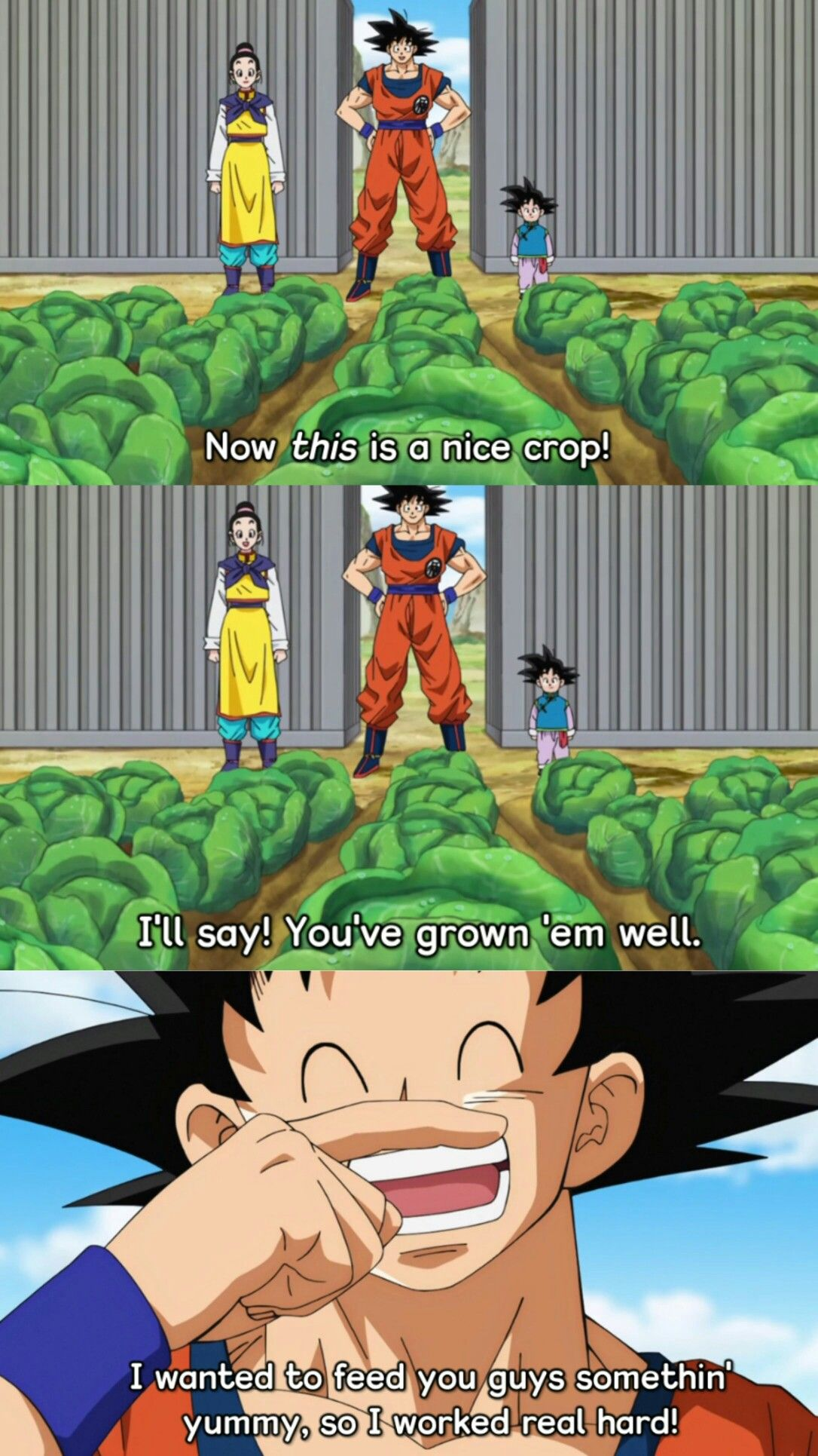 03d20c01 Goku, Chichi, and Goten proof that goku loves and cares about his family :D