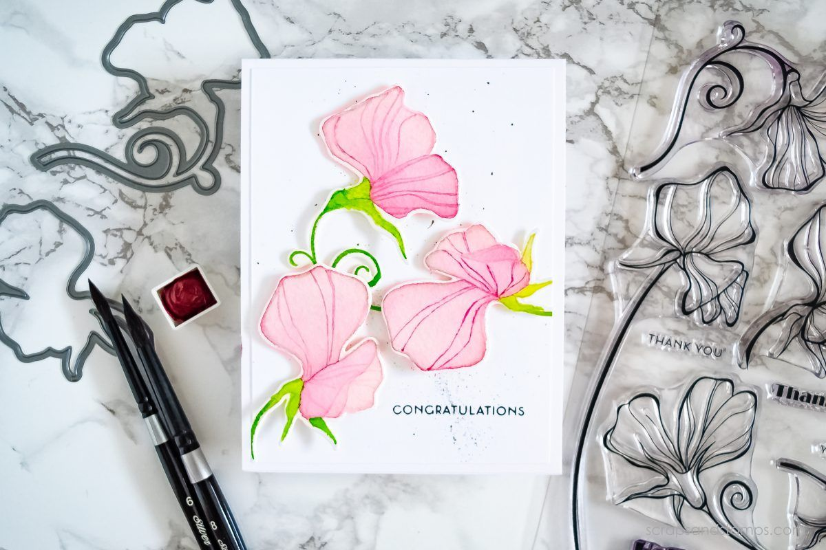 Video Giveaway Transparent Watercoloring W Stamped Images