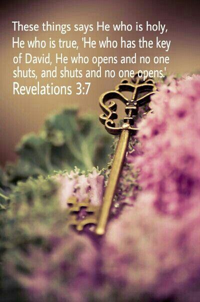 NLT Holy Sanctuary Audio Bible