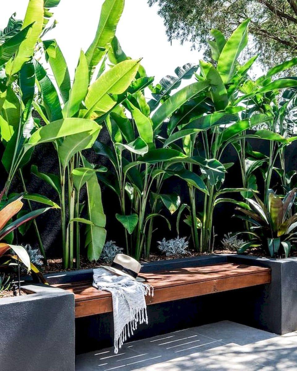 30 top tropical garden ideas  21 in 2019