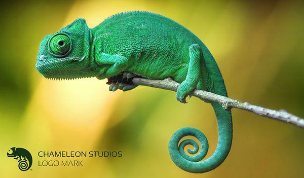CLIENT PROJECT Logo Mark for Chameleon StudiosChameleon