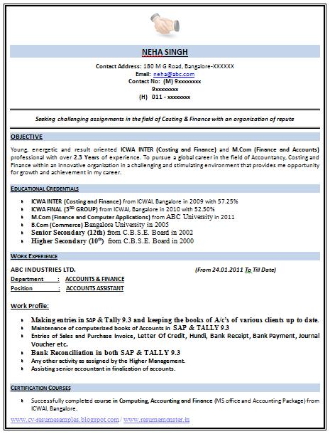 Sample Resume For Fresher Accountant Pdf