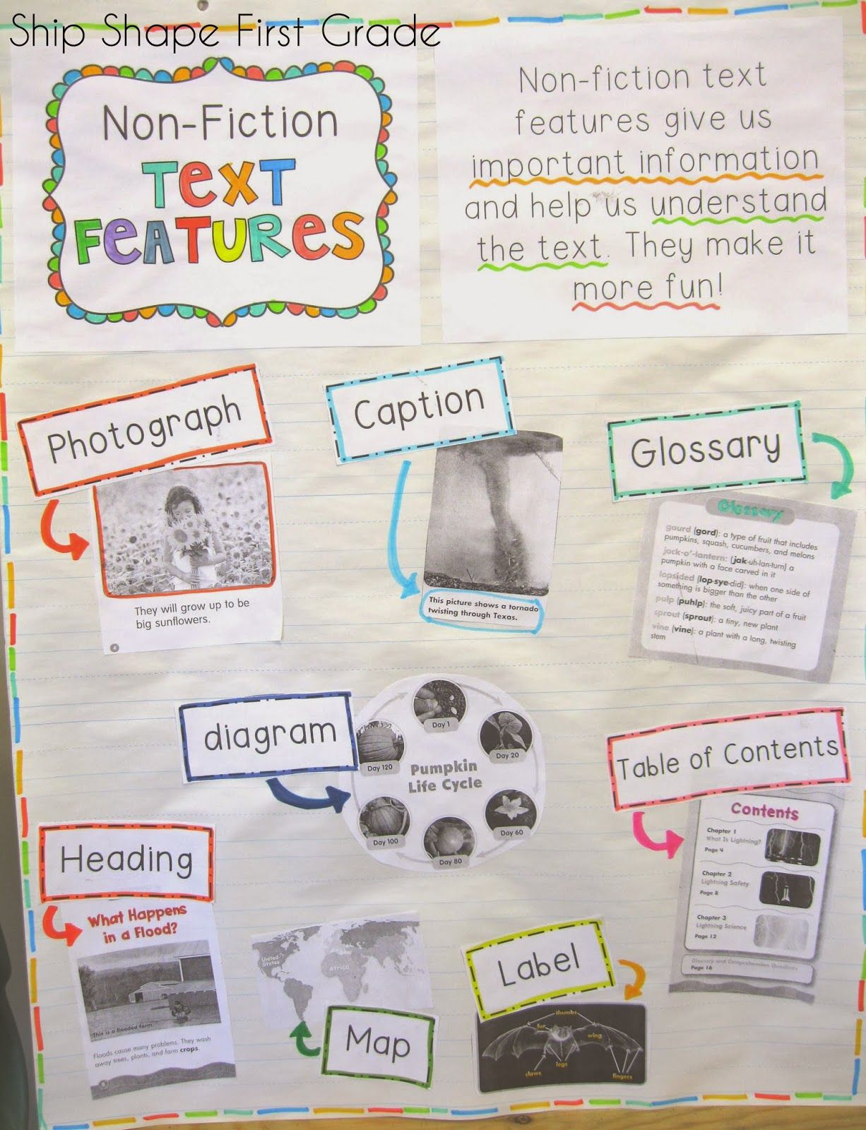Non Fiction Text Features Ship Shape First Grade Five