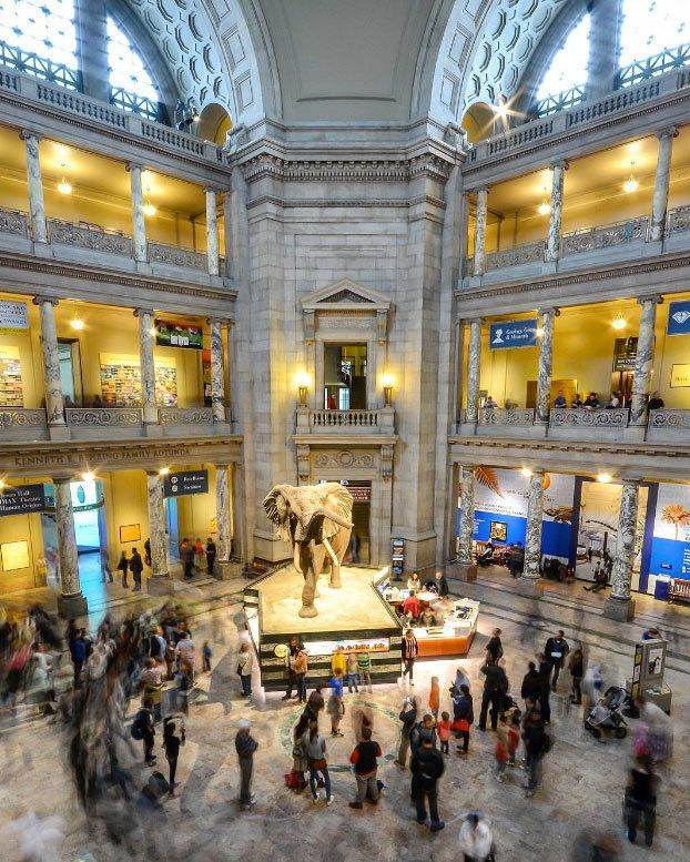 Washington Dc Offers Attractions And Activities For Everyone Including Visitors Who Want To S Smithsonian Museum Washington Dc Smithsonian Smithsonian Museum
